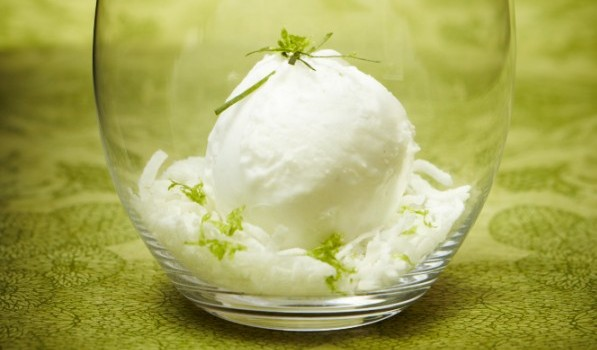 and coconut ice cream lime in the coconut macaroons coconut key lime ...